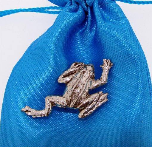 Frog Climbing Pin Badge - high quality pewter gifts from Pageant Pewter